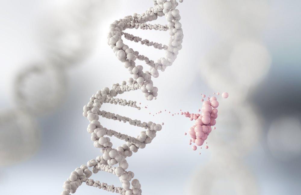 genetyka-sadowa-co-to-jest-czy-adkowat-musi-posiadac-specjalistyczna-wiedze-w-ty-zakresie